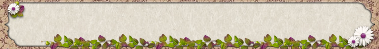 ETSY_BANNER_BOOKPLATE_PINK_FLORAL_SPRIGS