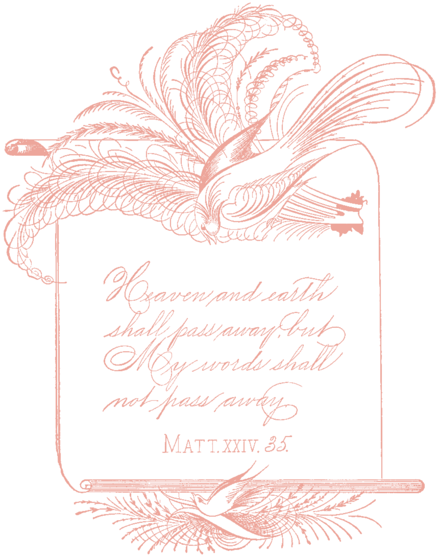 SSFS_Spencerian_Calligraphy_1 (2)