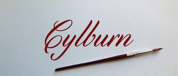 free script font, hand drawn font, professional font, brush stroke font, decorative font,