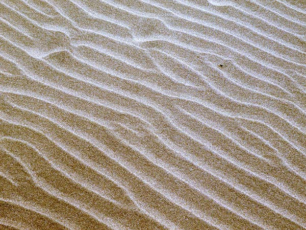 sand texture, free textures