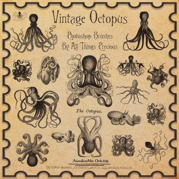 octopus illustrations, free brushes, vintage brushes