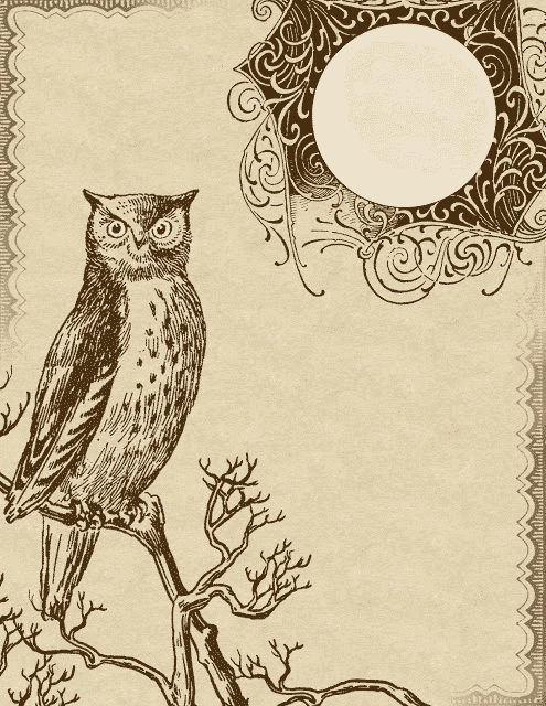 owl pictures, owl stationery, printable owl, clip art, owl, owls