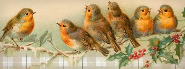 facebook, cover, free, vintage, birds, birdies, header, banner, banners