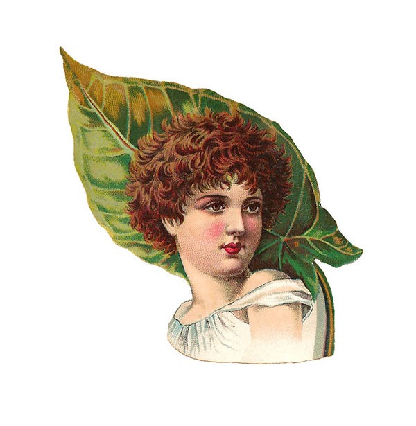 clip art, vintage, botanical, woman, women, leaf, leaves